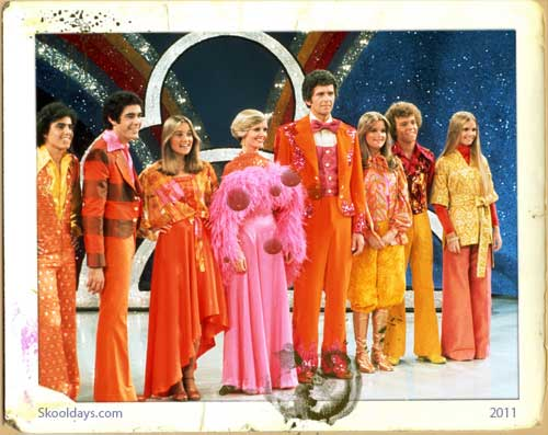 Classic 70s Television Brady Bunch