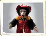 Zippy the Monkey